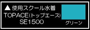 トップエースユニチカシルエスタ SE-1500グリーン×白